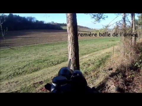 Chasse Du Sanglier En Battue 11/02/2016 - Big Sanglier 138kg - Gros Sanglier : 138KG / BIG WILD BOAR