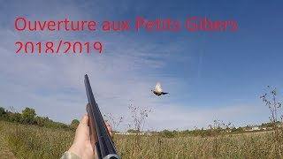 Ouverture aux Petits Gibiers 2018/2019