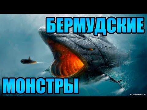 Подводные монстры все-таки реальность?! Документальный фильм о монстрах из глубин (01.01.2017)