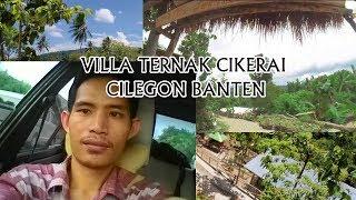 Cctv Cilegon Menuju Jalan Kali Timbang Villa Ternak Cikerai Cilegon Banten