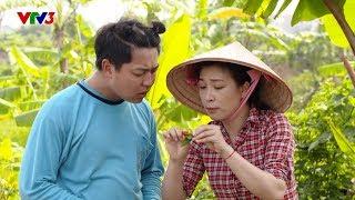 Phim hài Quốc Anh, Quang Tèo | Nhà nông vui vẻ |Tập 46: Bí quyết trị bệnh thán thư trên cây ớt