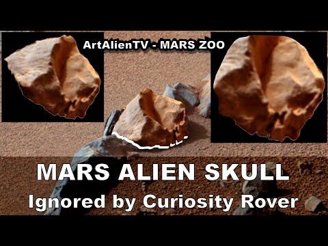 MARS ALIEN SKULL: Ignored by Curiosity Rover: Fossil Autopsy. ArtAlienTV - MARS ZOO 1080p