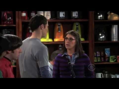 The big bang theory - Sheldon and Amy Farrah Fowler