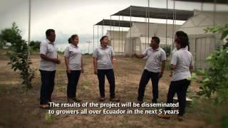 (English subtitles) Cultivo de árboles frutales y vegetales sin riego en Ecuador con Groasis