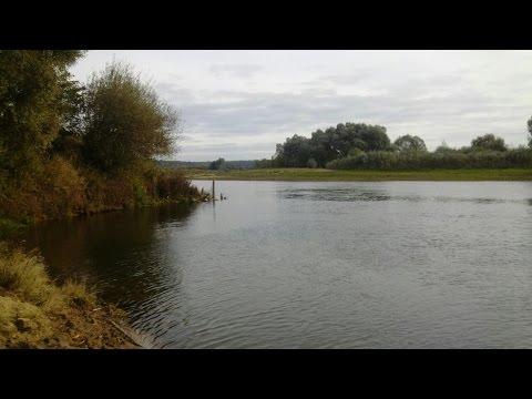 рыбалка на водохранилище птичь