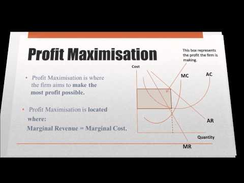 can profit maximization be achieved