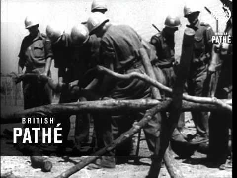 War Still Rages Between Katanga And UN Forces (1961)