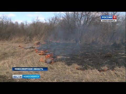 Спасатели с помощью дронов будут ловить поджигателей травы в Новосибирской области
