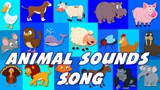 Animal Sounds Song | Sounds That Animals Make | Nursery Rhymes