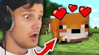 Ik ontvoer een Vos in Minecraft... 😱