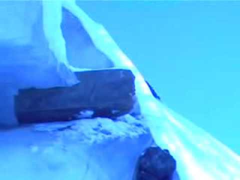 Arca de Noé filmada de perto. flv   — www. logomarcanet. com
