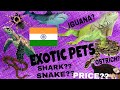 PRICE OF EXOTIC PETS|विदेशी पालतू जानवर के दाम| TURTLES,IGUANA,SNAKES