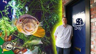 Aquarium Co-Op Store Tour! Old School Style.