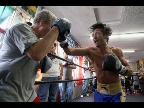 Freddie Roach Complete Mitt Workout Zou Shiming at Wild Card Boxing Gym Image 1