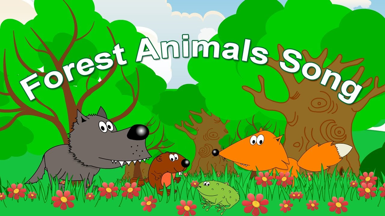 Animals Early Childhood From Early Childhood
