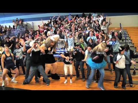 Harlem Shake (triton High School) video