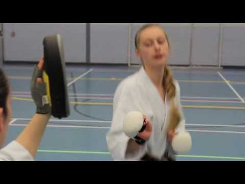 World Shotokan Karate Champion video