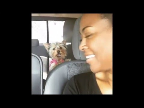 #Kenya Moore snatches the edges and eye brows of a hater who questions her about #MooreManor