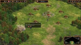 A Quik look at Age of Empires Definitive Edition