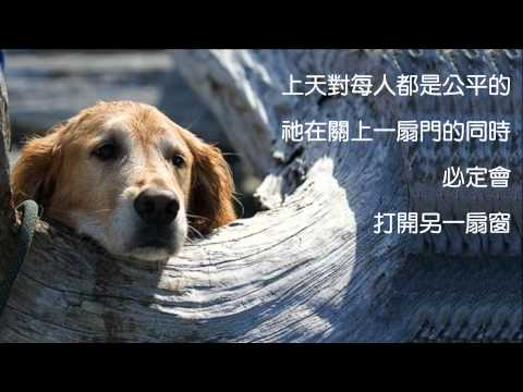心煩時記住三句話 Yiruma - Love Hurts