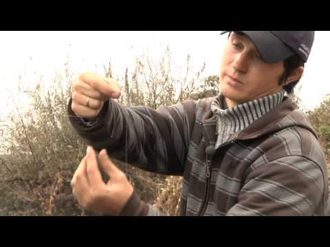 Рыбалка на дону 19942 shouts рыбалка на