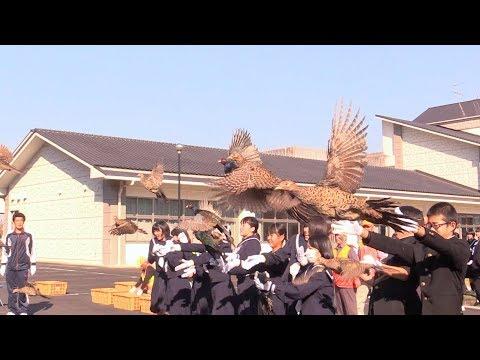 まちのできごと(広報うさH31.1月号)野鳥愛護校指定証伝達式