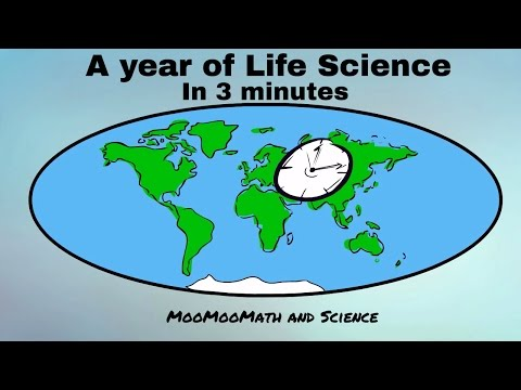A year of Life Science in 3 minutes-Middle School Science