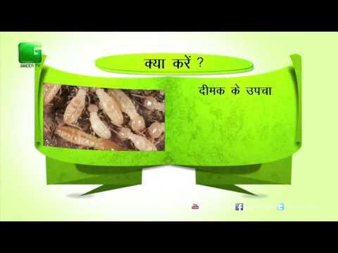 Green Gyan- Kya Karein Kya Na Karein- Fact 7 Green TV
