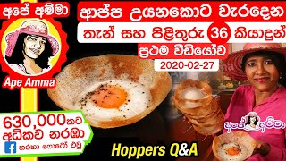 Making Hoppers Q&A by Apé Amma