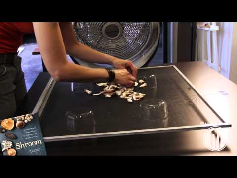 How to Dry Fresh Mushrooms