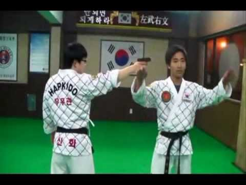 2012 moomookwan hapkido training 2 무무관합기도 Image 1