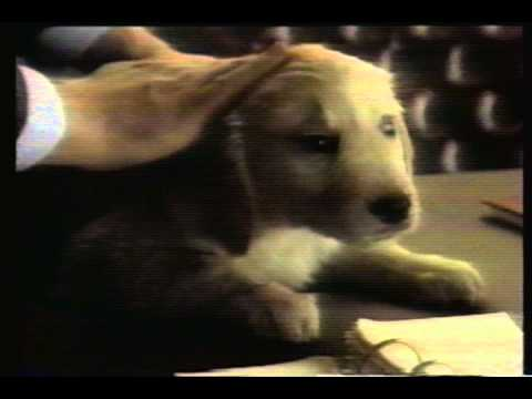 1988 - People's Savings Bank Commercial - Evansville, IN
