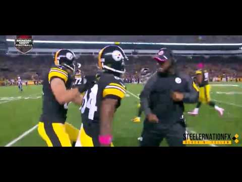 Pittsburgh Steelers Hype-Up Video 2015-2016 (Renegade)