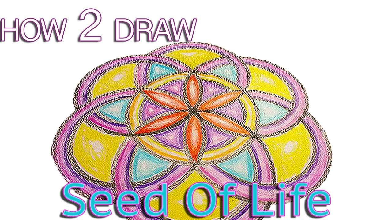 Geometric Life Drawing How to Draw The Seed of Life