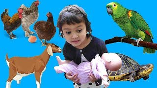 Kids Learn Names of Animals - Funny KIDS & ZOO ANIMALS