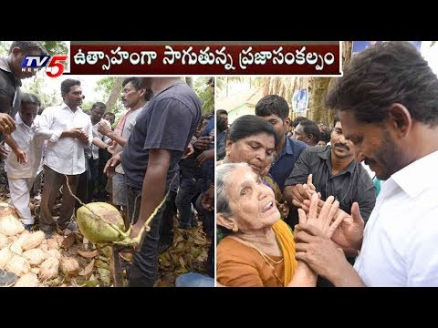YS Jagan Padayatra Latest Updates | East Godavari | TV5 News