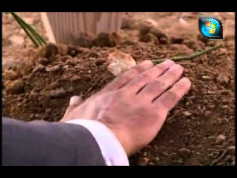 عمار كوسوفي مع اغنية حزينة جداً.flv Music Videos