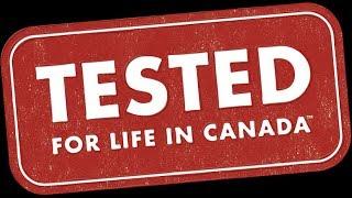 Канада 1201: Как поменялась Канада за время, что я тут живу