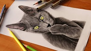 How to Draw Epic Grey Kitty