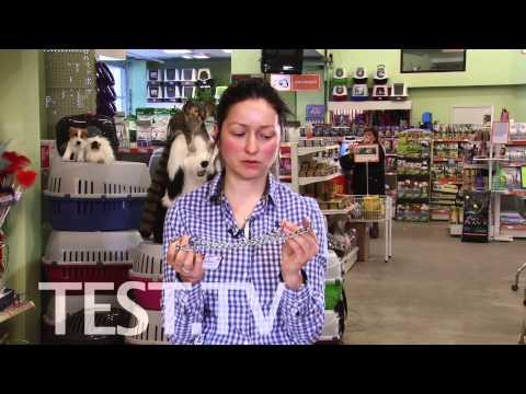 Видео как выбрать ошейник