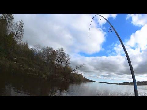 Осенняя Ловля Судака | Ловля Судака на Джиг | Неожиданный Паровоз |1080p |BF-№ 58
