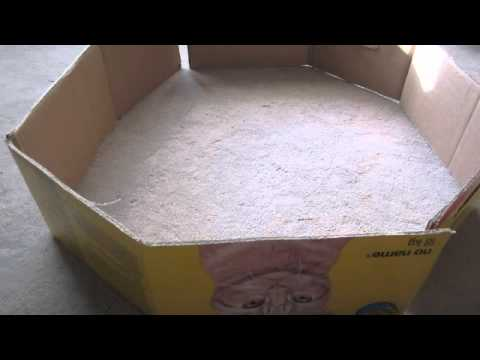 How to make a hamster playpen youtube for Diy playpen for guinea pigs
