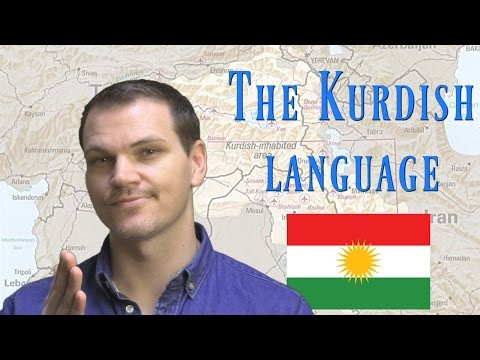 The Kurdish Language