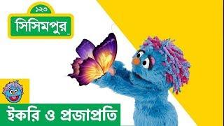 Sisimpur | Ikri and butterfly  | ইকরি ও প্রজাপ্রতি