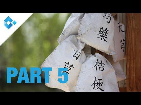 Anwendung von traditionell chinesischer Medizin in der Gynäkologie (PART 5)