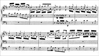 J S Bach Prelude And Fugue In D Major Bwv 532 Peter Hurford