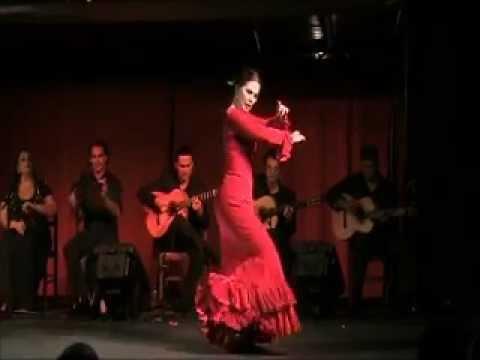 festival flamenco gorbio 2011 por solea distribution : baile eva luisa, cante nino de elche y alicia acuna, guitare antonio cortes, cristobal corbel y manuel...