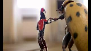 Demo M Smile Little Ant Man