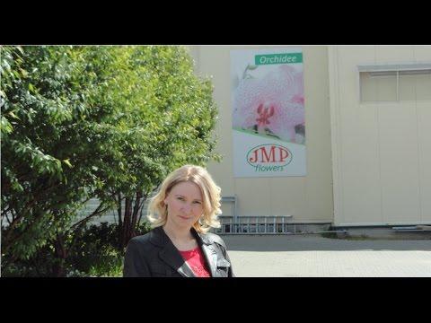 Поездка на производство JMP Flowers