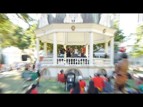 TMT protest- Iolani Palace